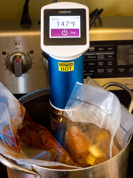 Anova Sous Vide Circulator-12