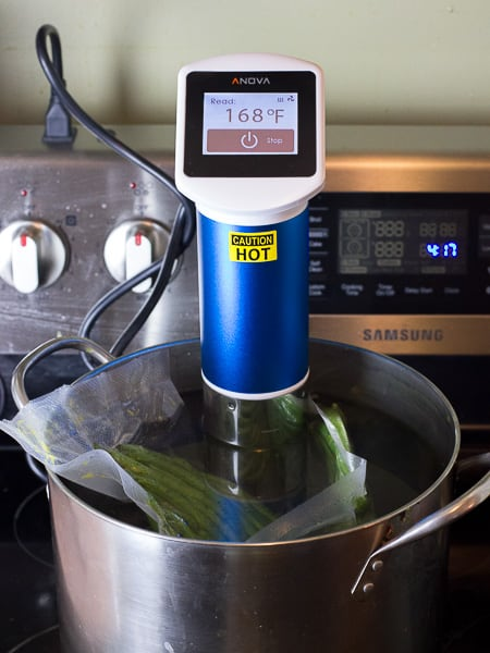 Anova Sous Vide Circulator-7