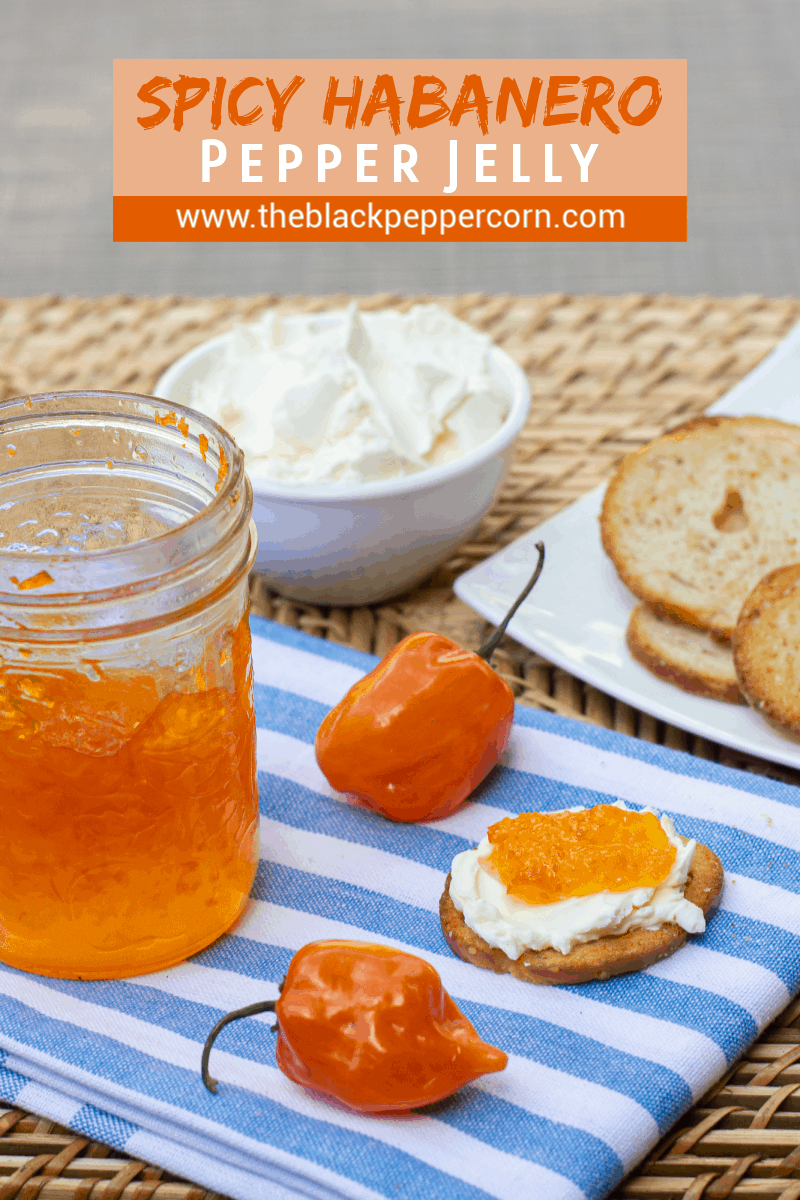 Easy to make sweet red pepper jelly that is great with crackers and cream cheese. Simple canning with instructions for how to process in hot water bath.