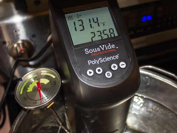 Polyscience Sous Vide Professional Creative Series Product Review-13