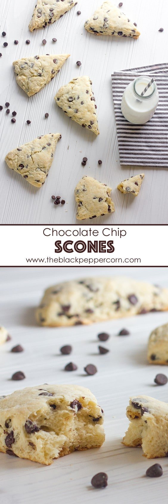 chocolate chip scones pinterest