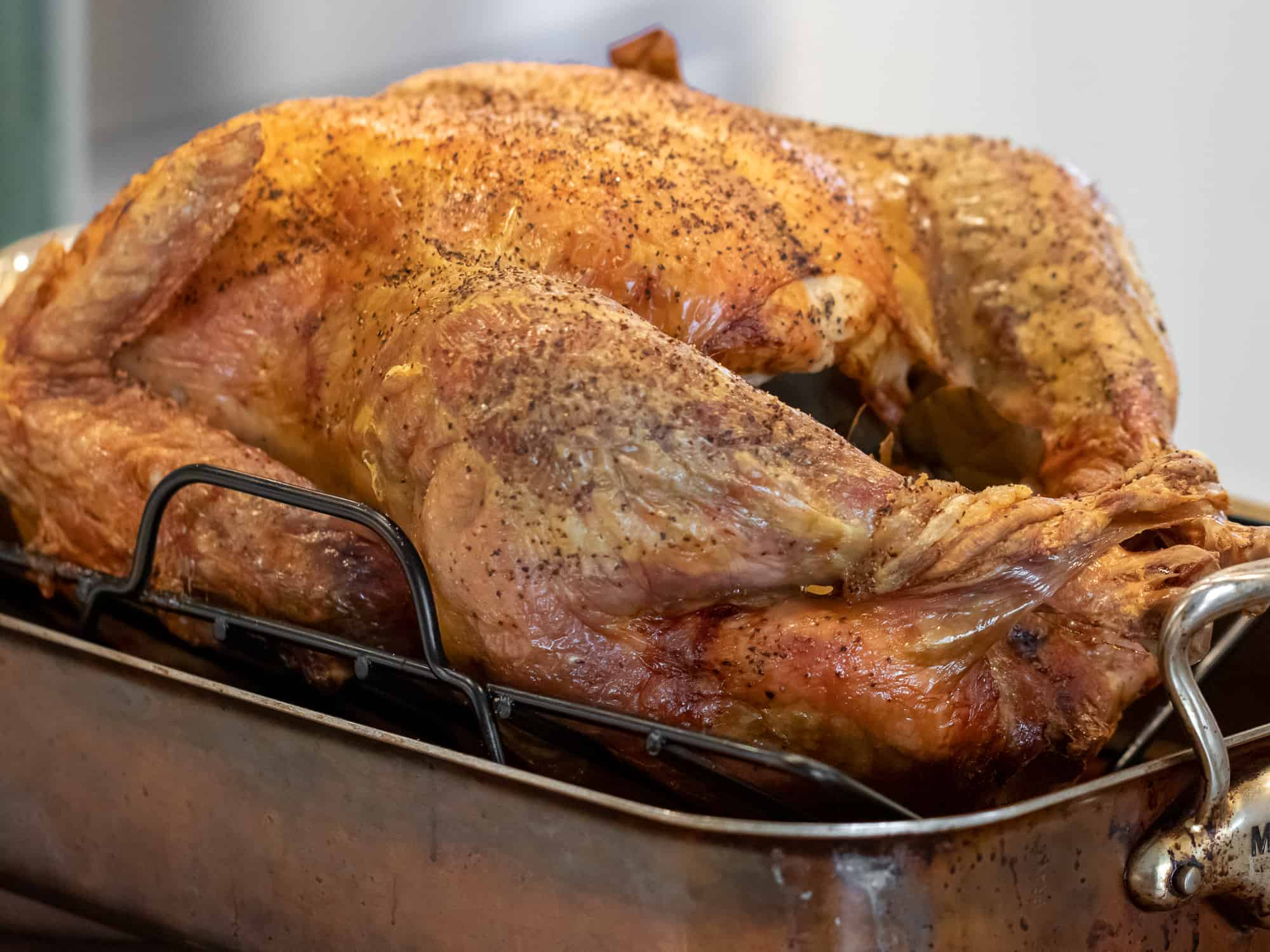 Perfectly roasted unstuffed turkey