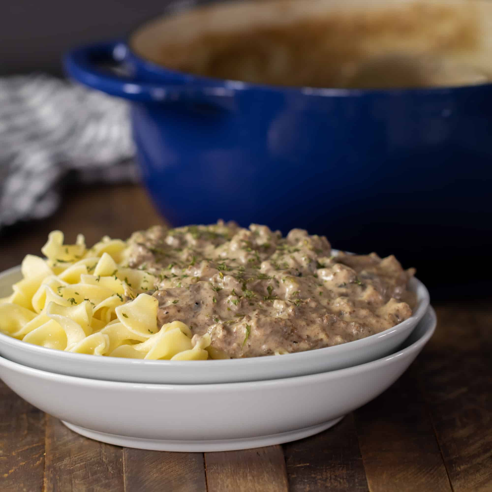 A bowl of beef stroganoff with egg noodles in front of a dutch oven.