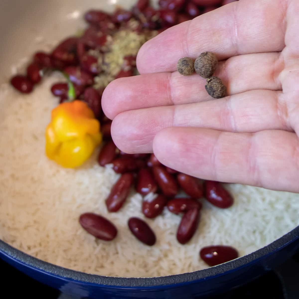 Holding three allspice berries over the pot.